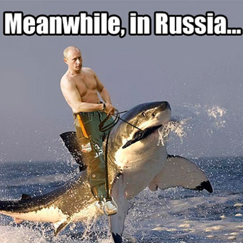 Funny-pictures-meanwhile-in-russia-04-500x500