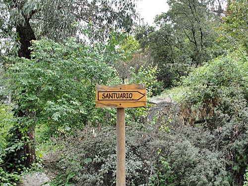 cerro14